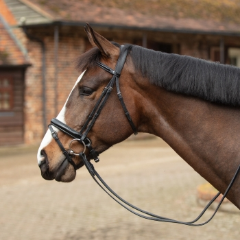 Mark Todd Patent Leather Headcollar