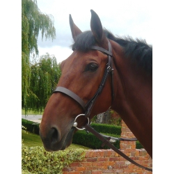 Mark Todd Patent Dressage Bridle
