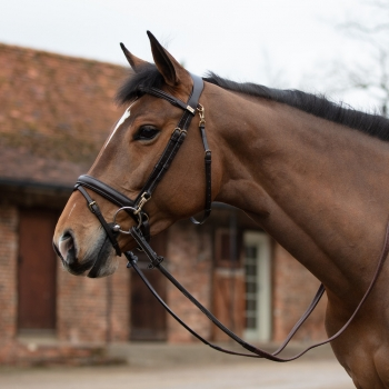 Mark Todd Clip Training Bridle