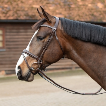 Mark Todd Dressage Crystal Bridle