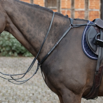 Mark Todd Padded Breastplate